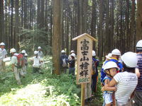 森林認証 富士山檜輝